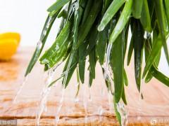 """韭菜被誉为""""男人菜"""",但不能和它同吃,小心是""""慢性自杀""""!"""