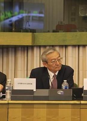 中国驻欧盟使团团长:对单边主义妥协有损根本利益 - 时政 - 东南